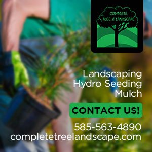 Complete Tree & Landscape Inc Website Image